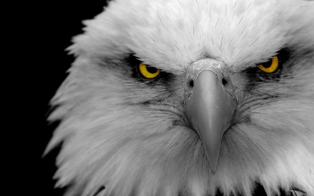 Monsoon Driving Tips -  Keep Eagle Eyes